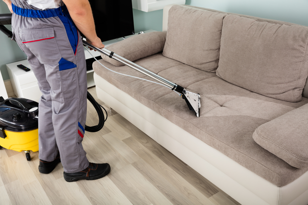 upholstery cleaning Park City
